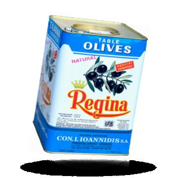 Regina Kalamata-Oliven