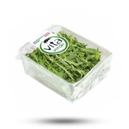 Rucola Salat UL: IT